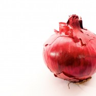 """food shot """"red onion"""" / stock image"""